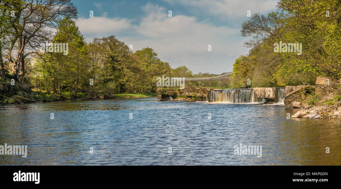 Panoramic view of the Grade II listed, Scheduled Ancient Monument of Whorlton Bridge over the river Tees, connecting Yorkshire and County Durham - Stock Image