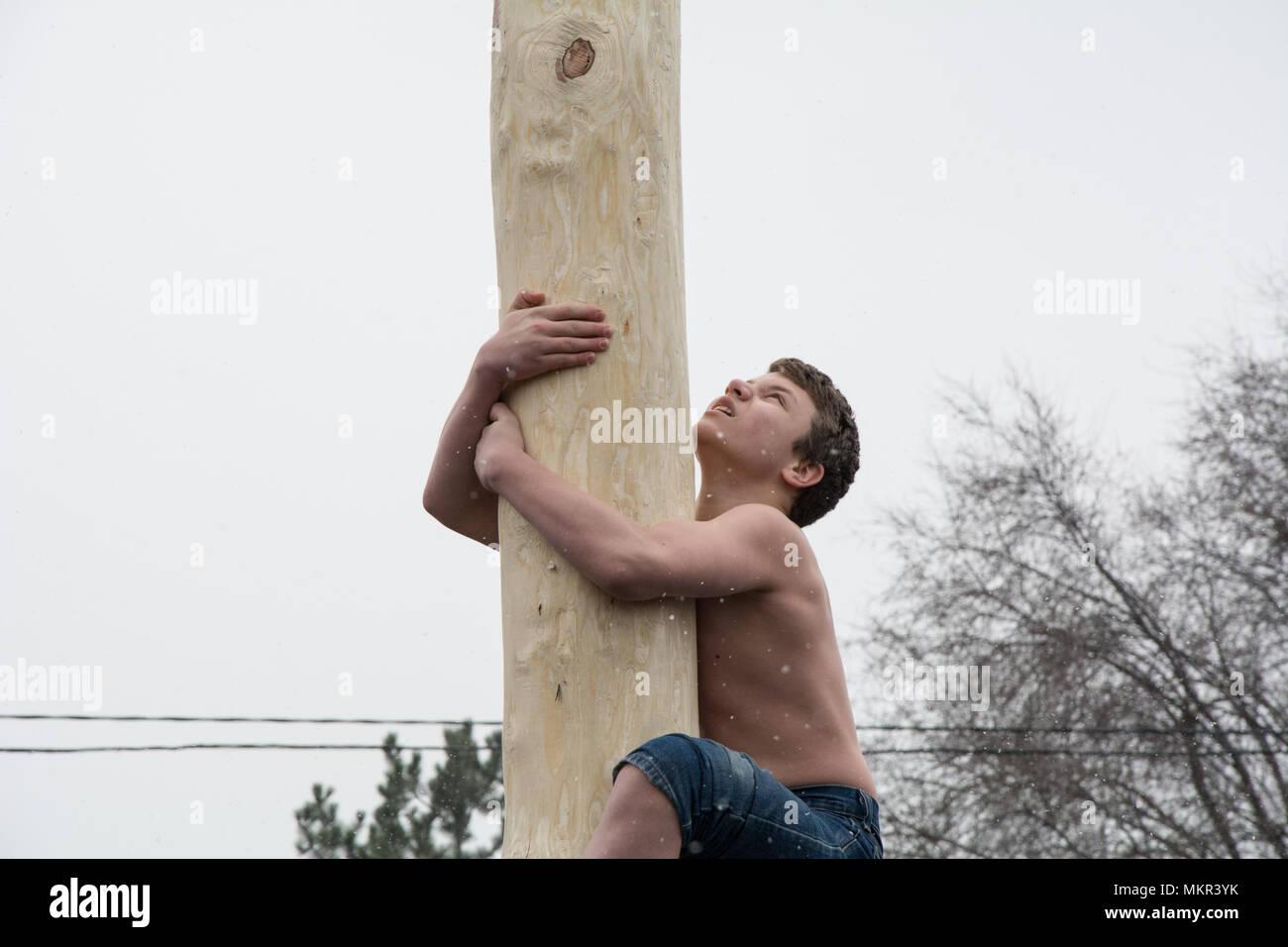 TIRASPOL, MOLDOVA-FEBRUARY 18, 2018: Boy climbing on a wooden pole for the prize. Slavonic folk pagan holiday Maslenitsa (Shrovetide) - a symbolic mee - Stock Image