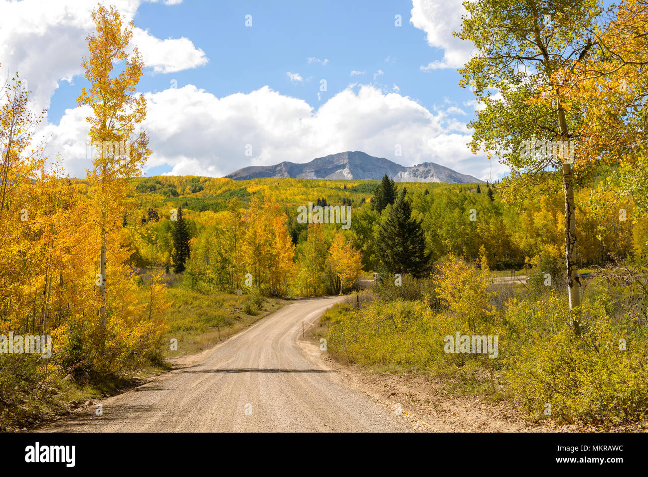 Kebler Pass - Autumn view of Kebler Pass, Crested Butte, Colorado, USA. - Stock Image