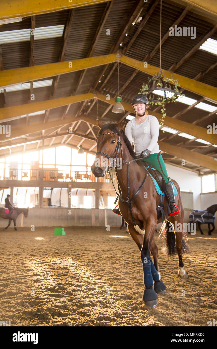 Young woman rides her horse in the riding hall. In the background you can see several blurred horses and riders. The rider trots on her Hanoverian. Sh - Stock Image