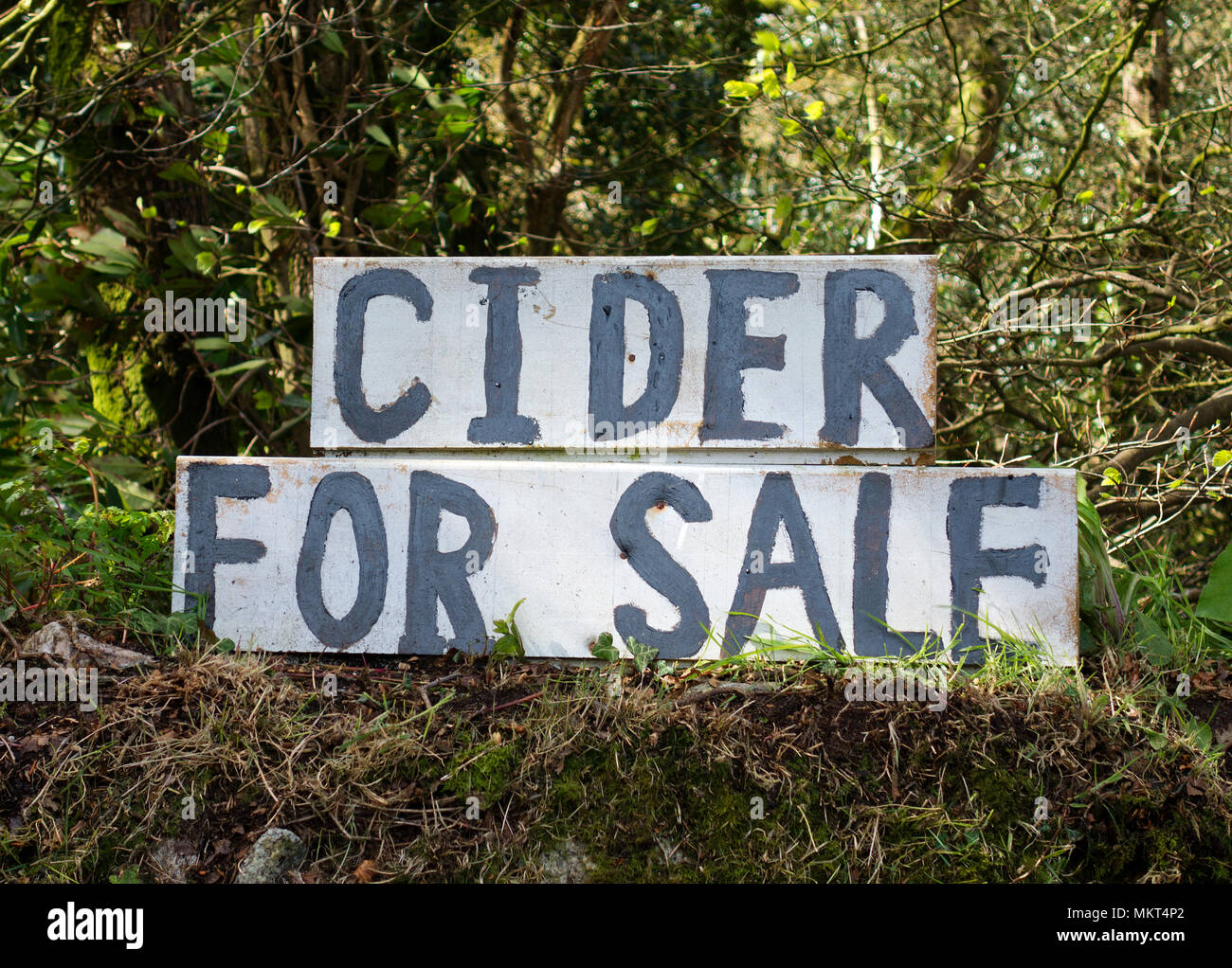 cider for sale sign by the roadside in somerset, england, uk. - Stock Image
