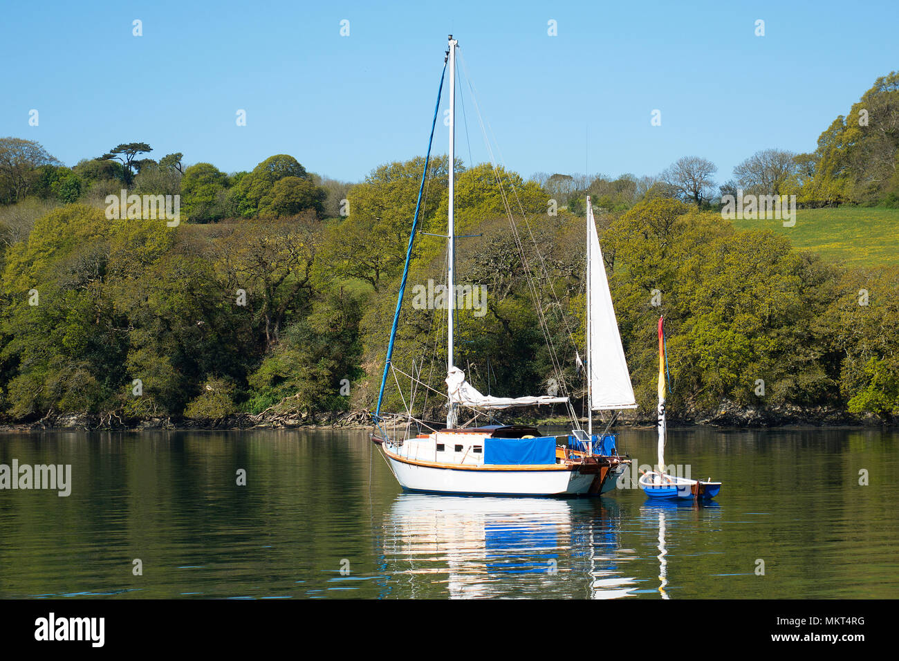 yacht moored in a creek off the helford river, cornwall, england, britain, uk. - Stock Image