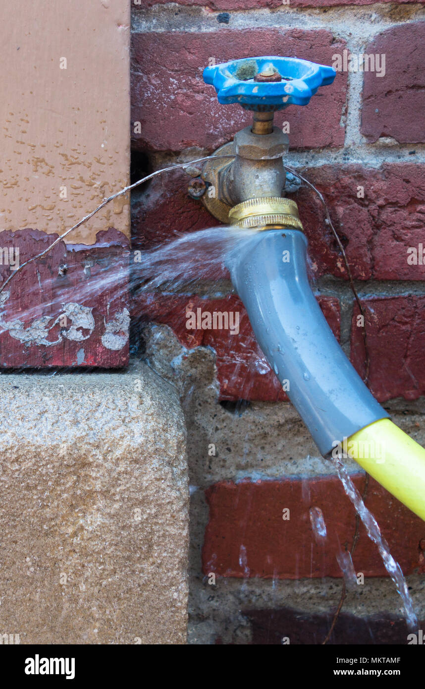 Water squirting from the spigot of a yellow hose on a red brick wall - Stock Image