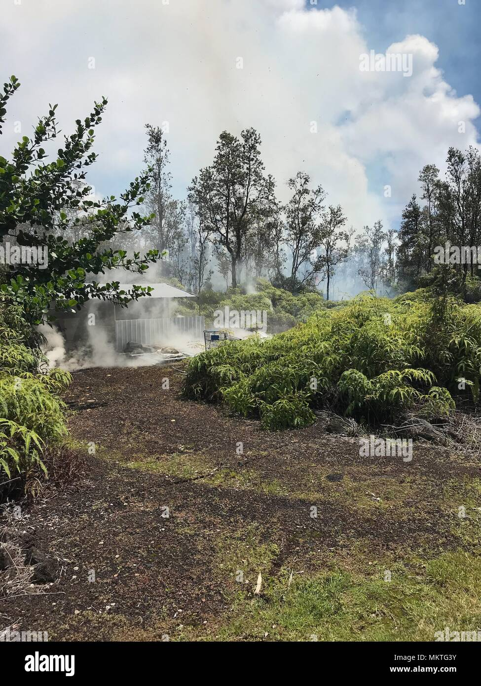Steam and poison gases vent from Fissure 4 between Kaupili and Mohala Streets from the Kilauea volcanic eruption May 4, 2018 in Leilani Estates, Hawaii. The recent eruption continues destroying homes, forcing evacuations and spewing lava and poison gas on the Big Island of Hawaii. - Stock Image