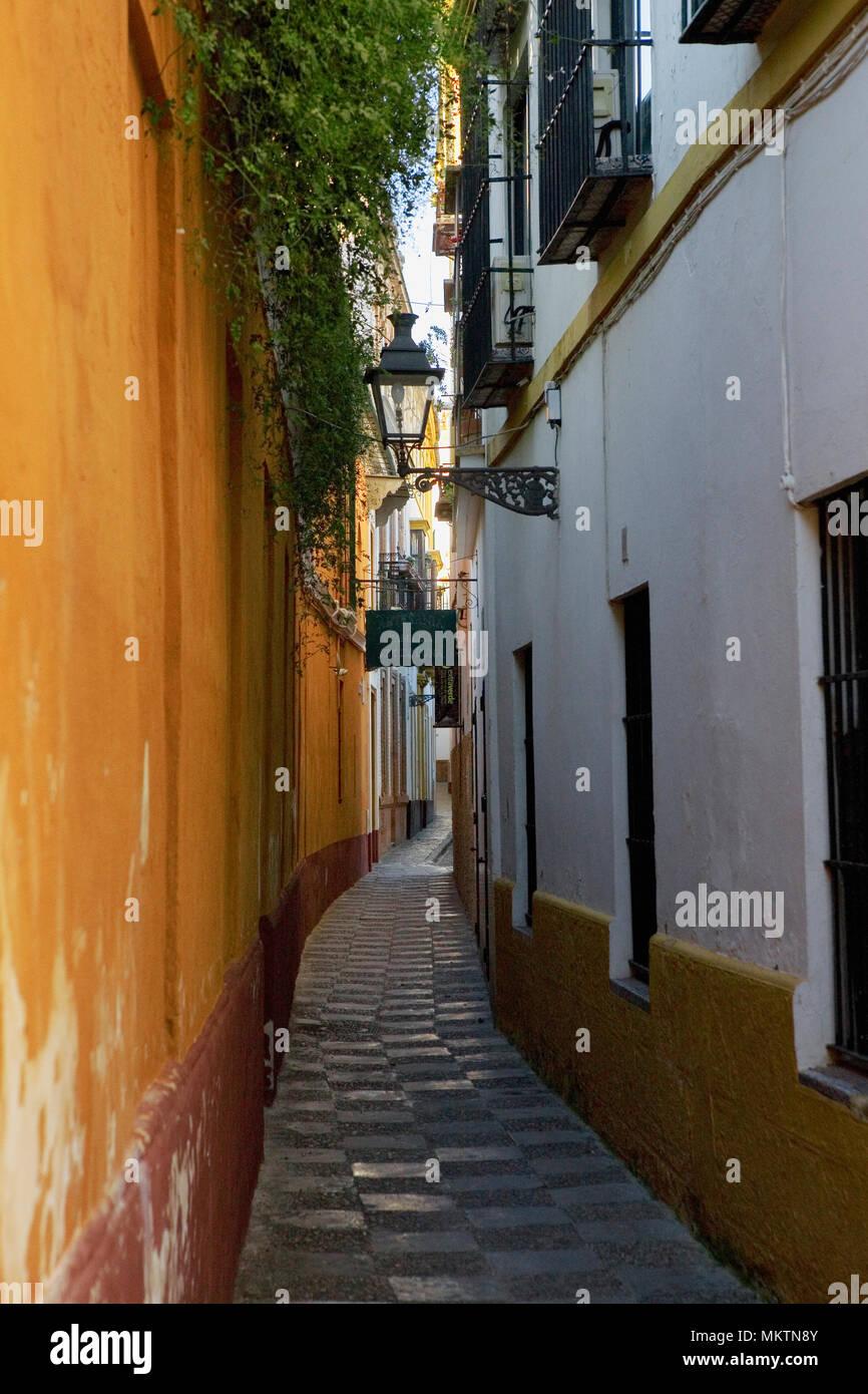 Calle Vida, Barrio de Santa Cruz, Sevilla, Andalusia, Spain: a pretty, narrow lane in the old Medieval quarter Stock Photo