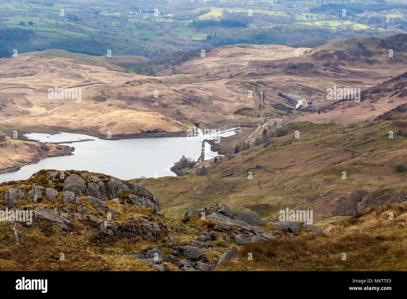 From just above Wysgan Quarry on the Moelwyn mountains in Snowdonia, steam can be seen rising from a narrow gauge train on the Ffestiniog railway as i Stock Photo