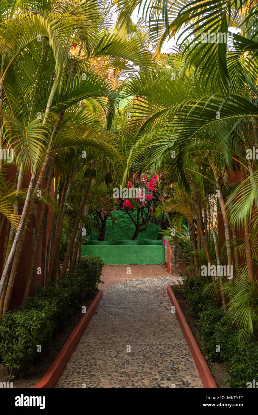 bamboo lined path in resort village in Careyes Jalisco State Mexico ...