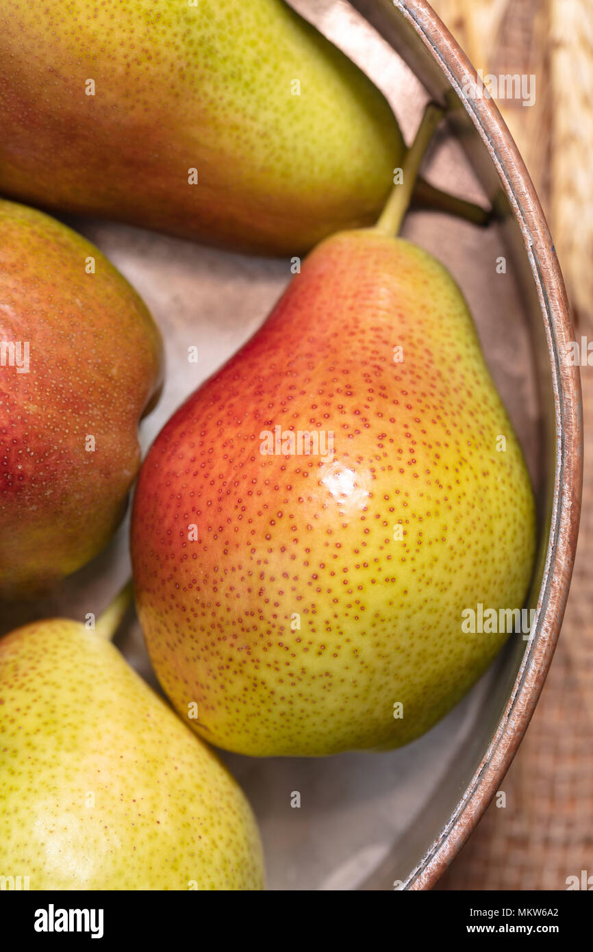 Yellow and red pears on burlap and in vintage pan decorated with wheat Miniature Pears decorating a table - Stock Image