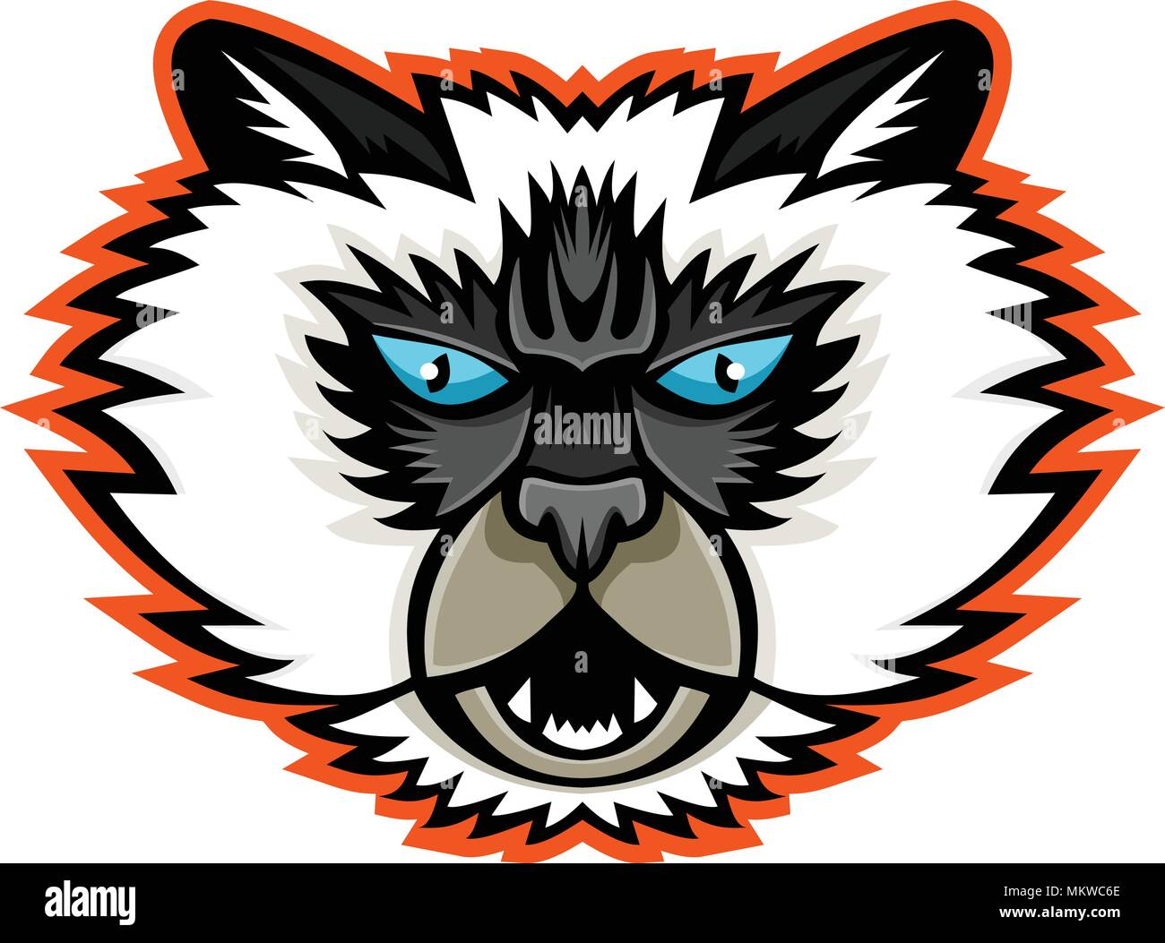 Sports mascot icon illustration of head of a Himalayan cat, a breed of long-haired cat viewed from front on isolated background in retro style. - Stock Vector