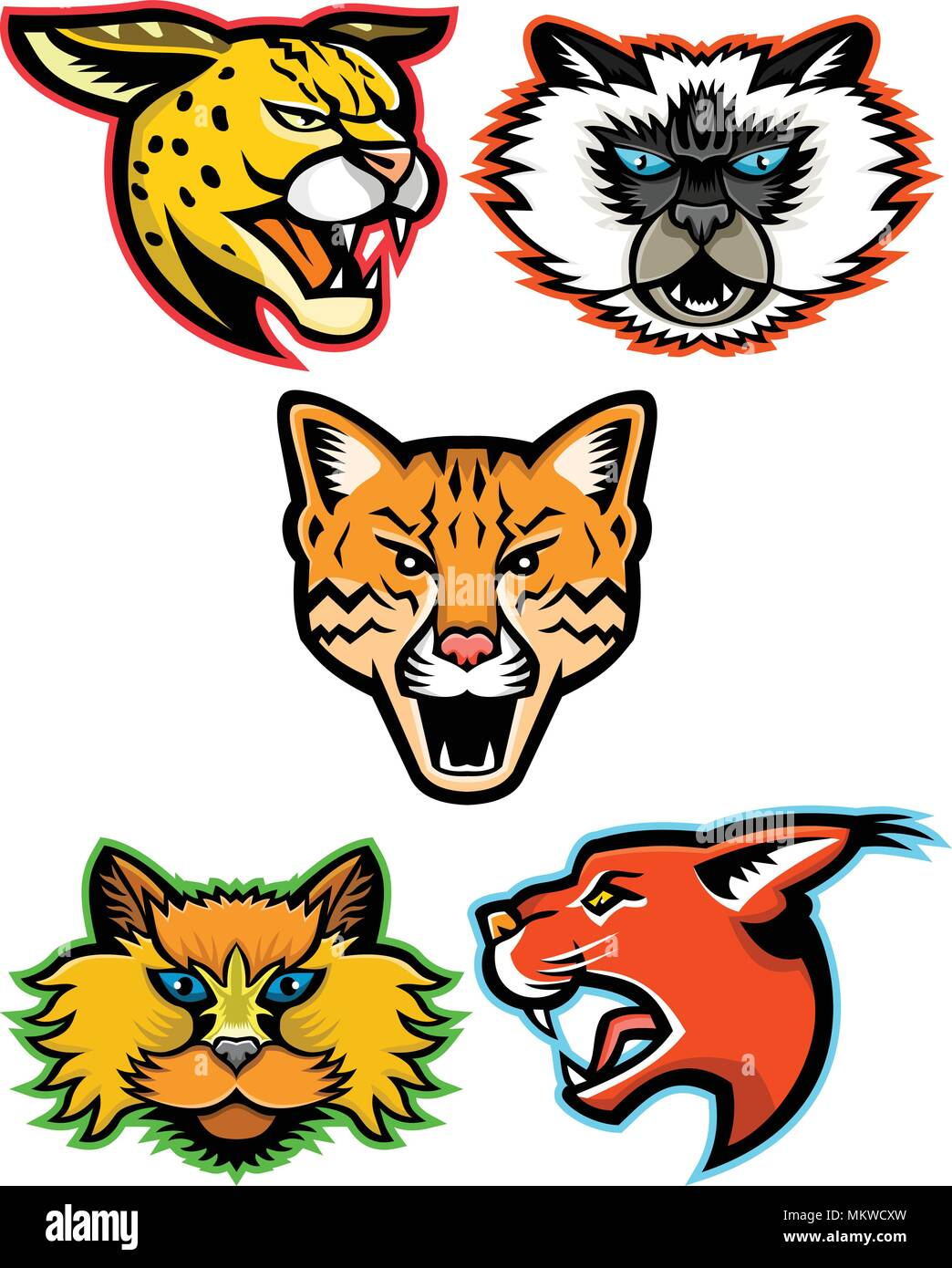 Sports mascot icon set of heads of wild and domestic cats like the serval, Himalayan cat, ocelot, Selkirk Rex cat and the caracal cat  viewed from sid - Stock Vector