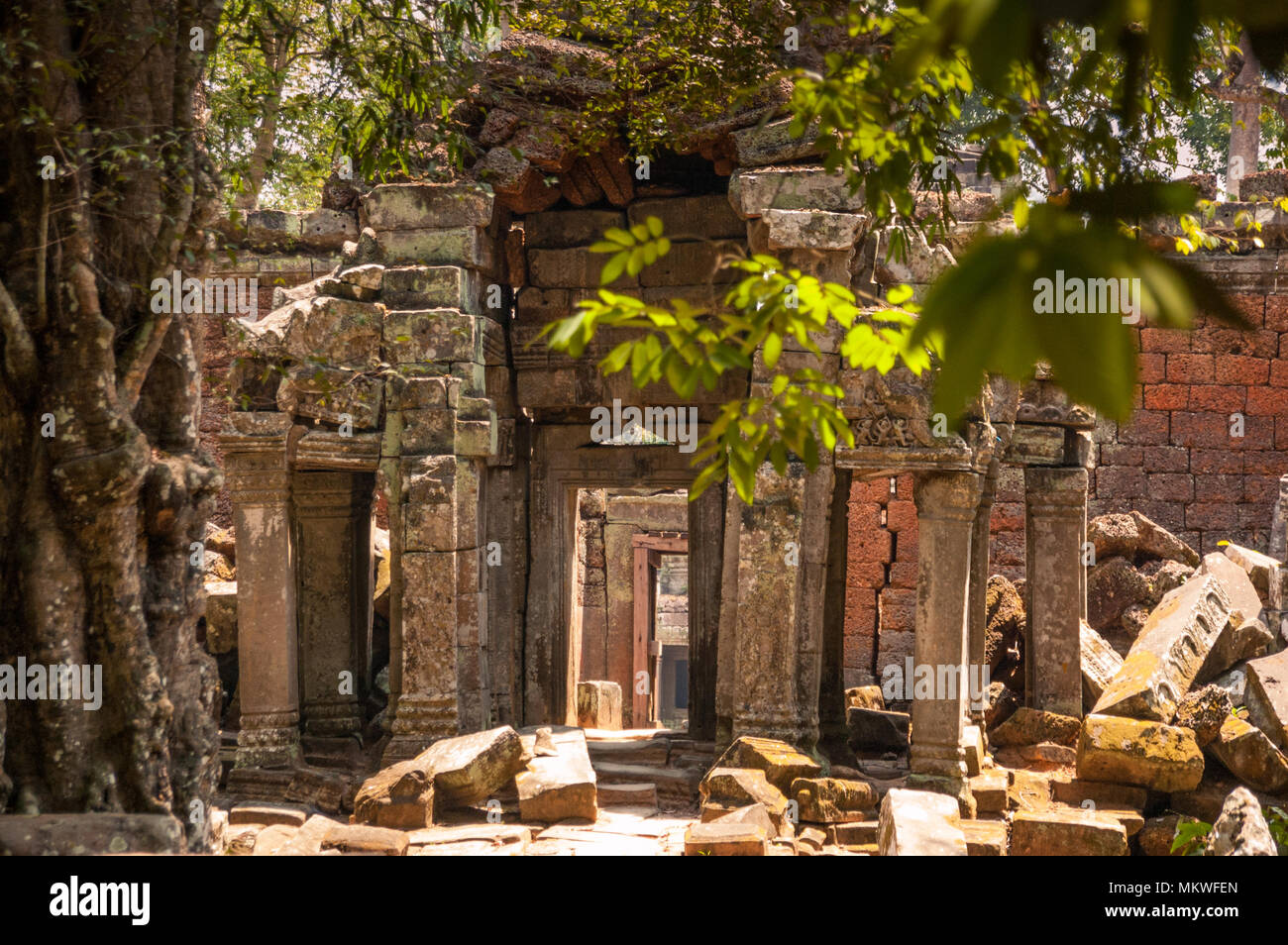 While walls of ancient temples crumble around them, doorways into different areas remain intact, inviting visitors inside. Ta Prohm, Cambodia - Stock Image