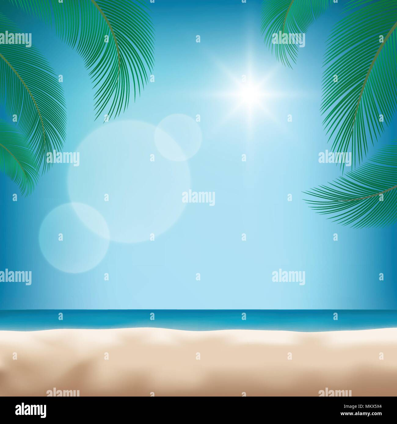 nature summer tropical backgrounds with green palm leaf or coconut