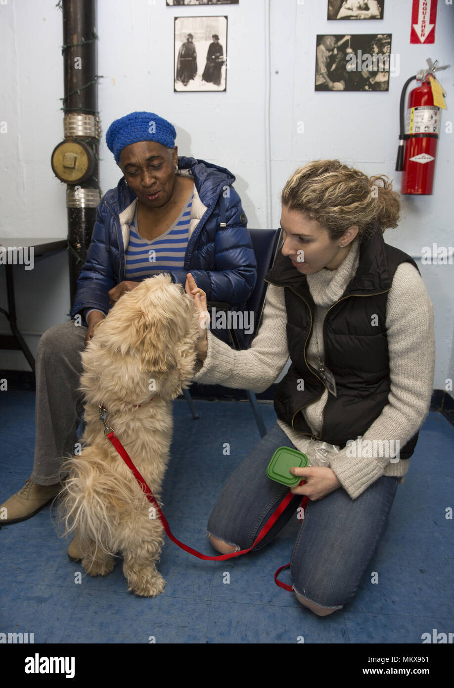 Dog therapist with therapy dog visits regularly a senior center on the Lower East Side of Manhattan, New York City. - Stock Image