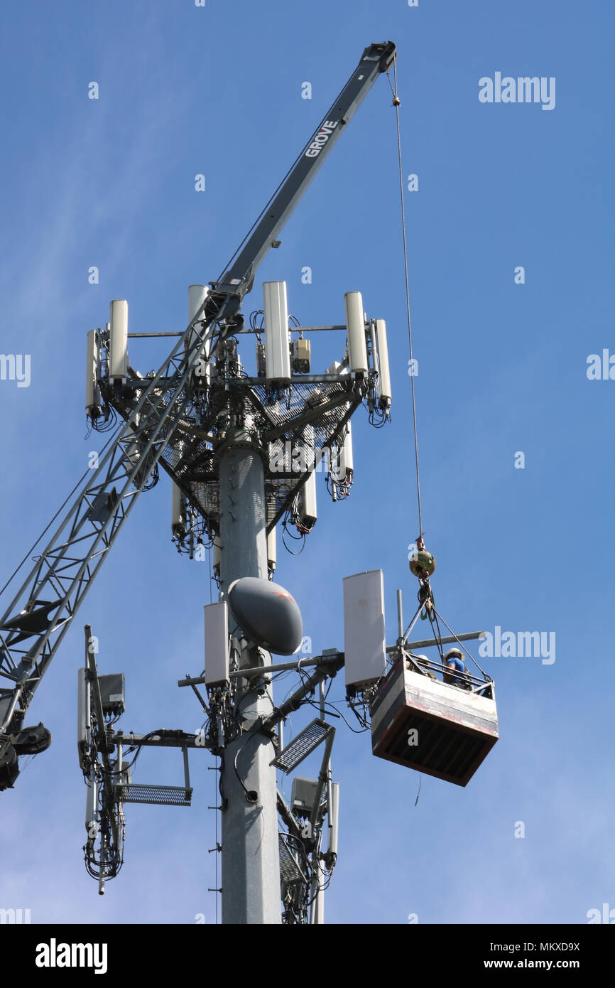 Two men suspended in the air via a cable while working on a cellphone tower in Ferndale, Washington, USA. Stock Photo