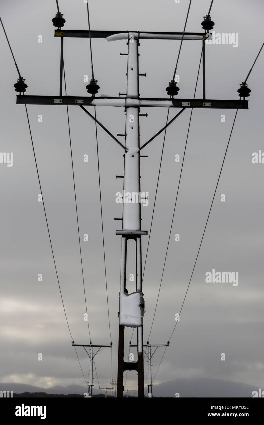 Central North Island, New Zealand. Utility pole - Stock Image