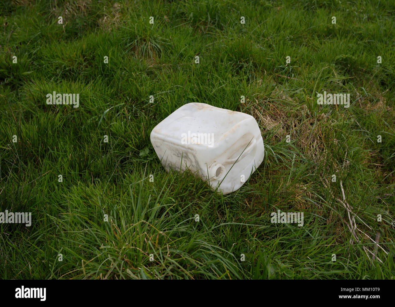 Plastic container thrown away on grass on coastal footpath in north wales uk Stock Photo