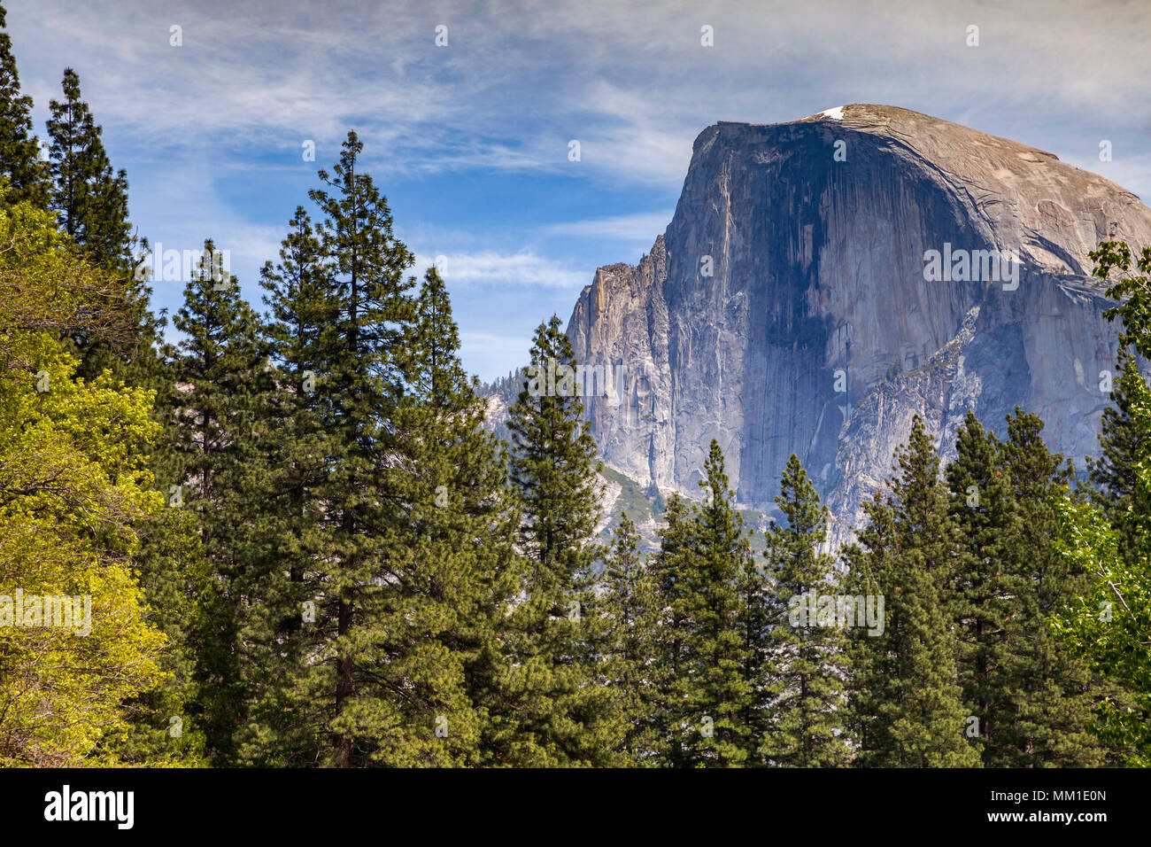 Half Dome, Yosemite National Park, California, USA,mountain,dome,national park,yosemite,Californian,america,american,trees,landscape,landscapes,scenic - Stock Image