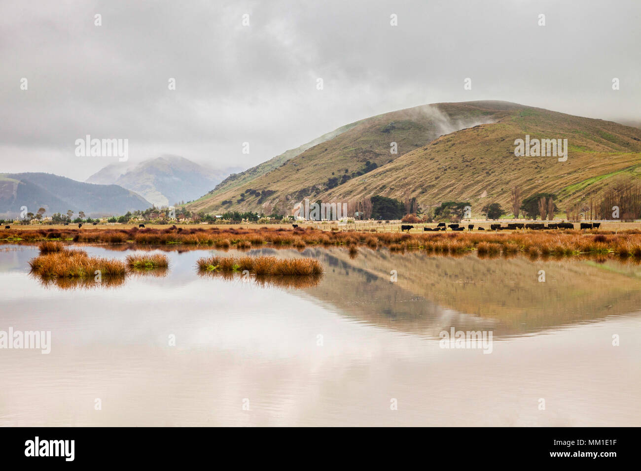 A foggy morning over the farms, lakes and hills of Canterbury, New Zealand. - Stock Image