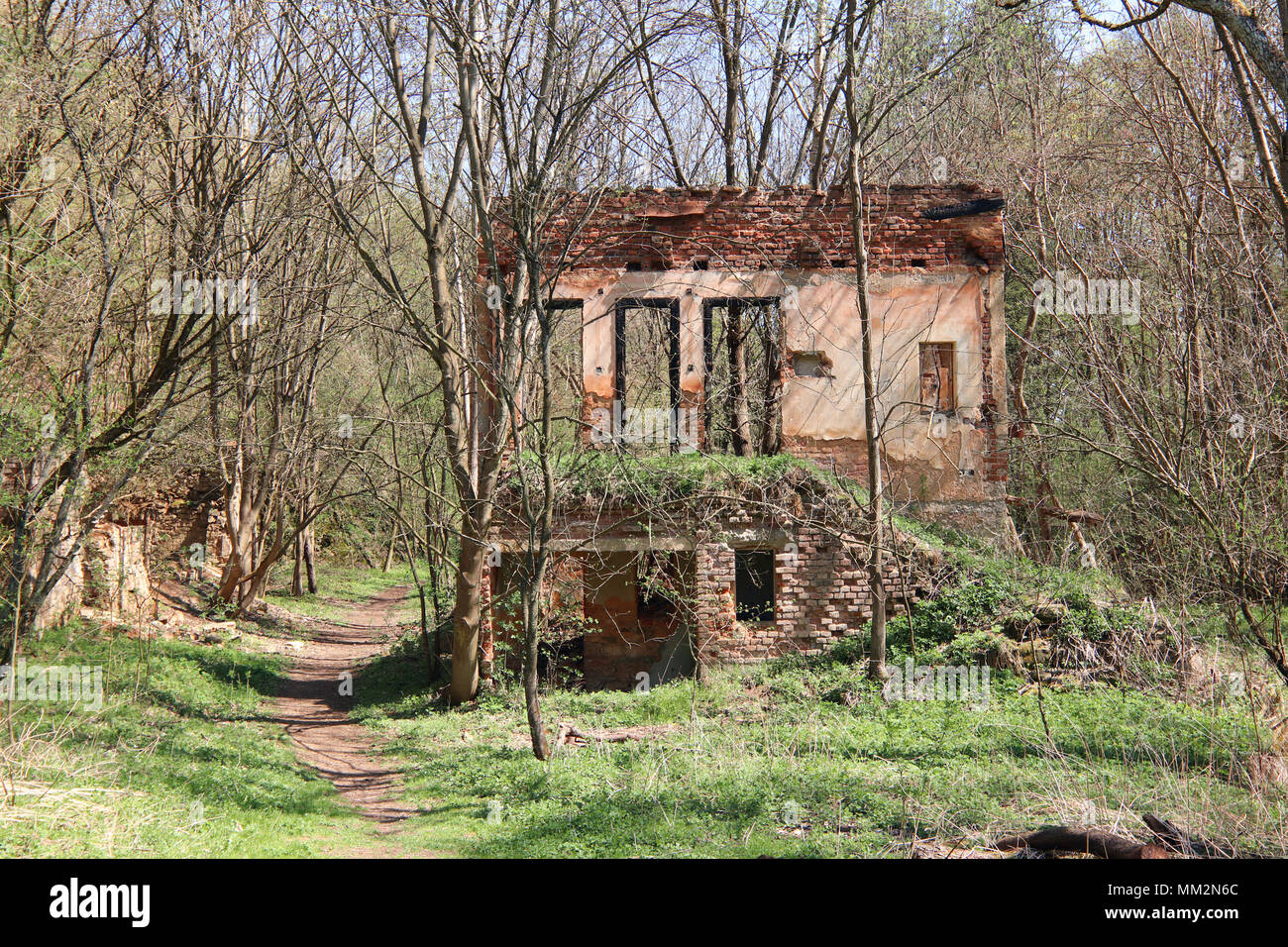 Ruins of the old building in the forest - Stock Image