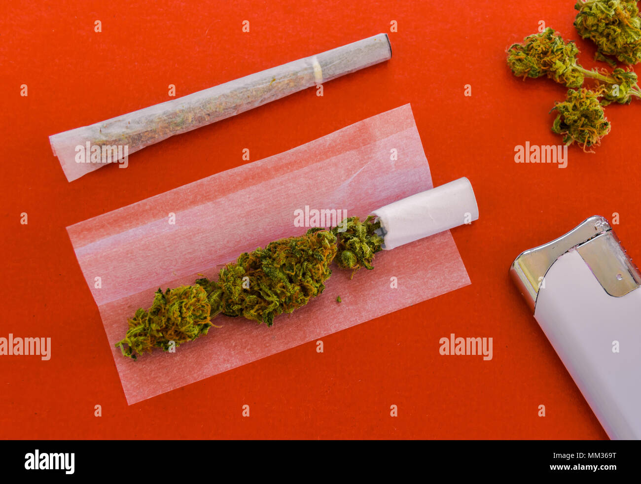 Rolling a joint of marijuana. Views of two joints, one prepared to roll, lighter and marijuana buds isolated on red background. - Stock Image