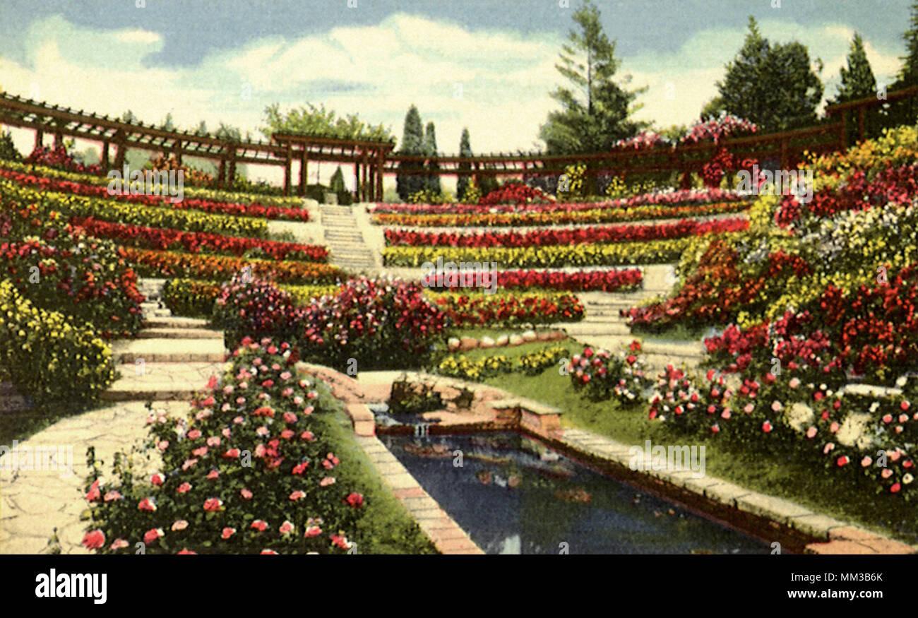 Berkeley Rose Garden Stock Photos & Berkeley Rose Garden Stock ...