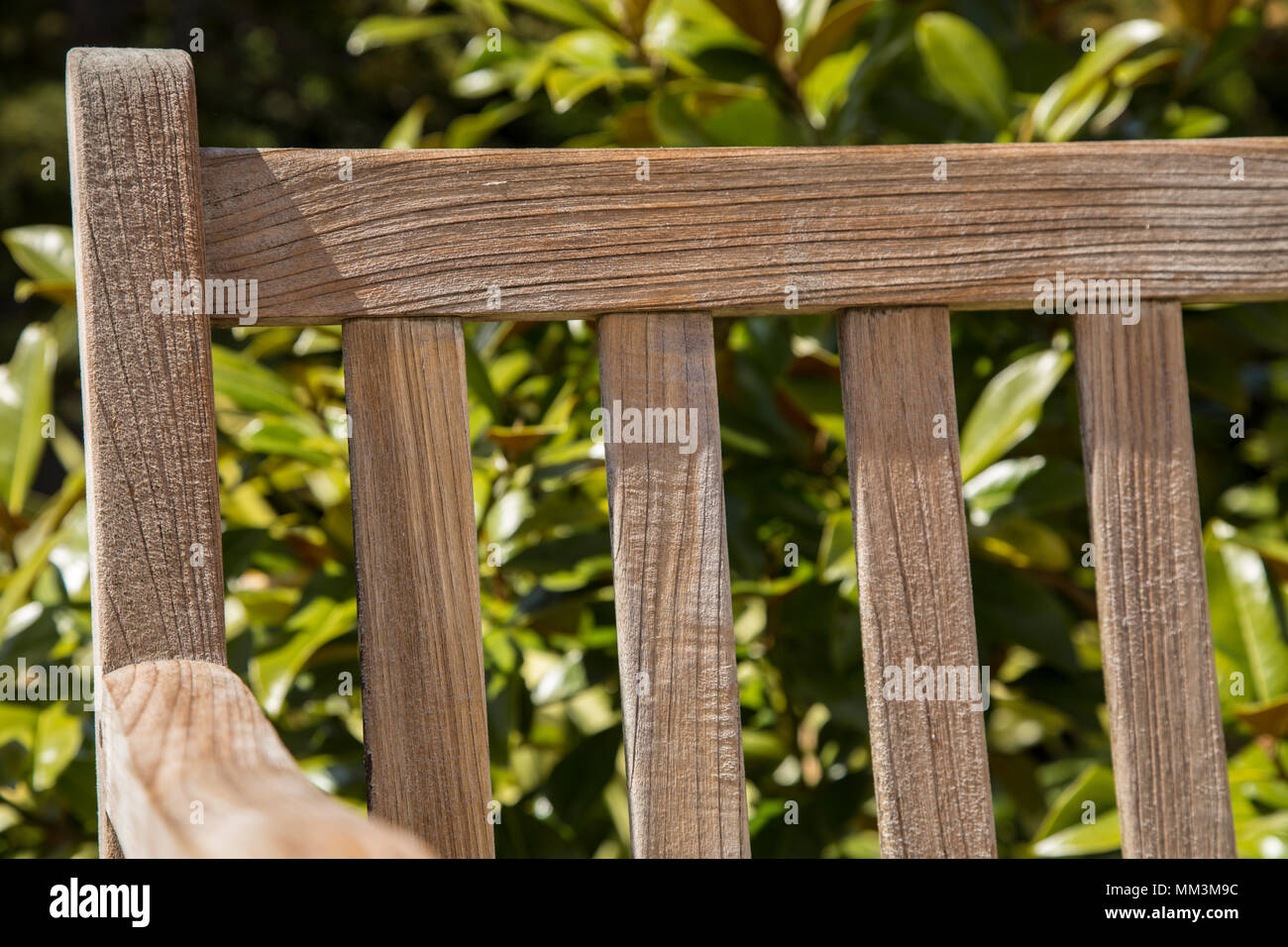 Teak Bench Stock Photos & Teak Bench Stock Images - Alamy
