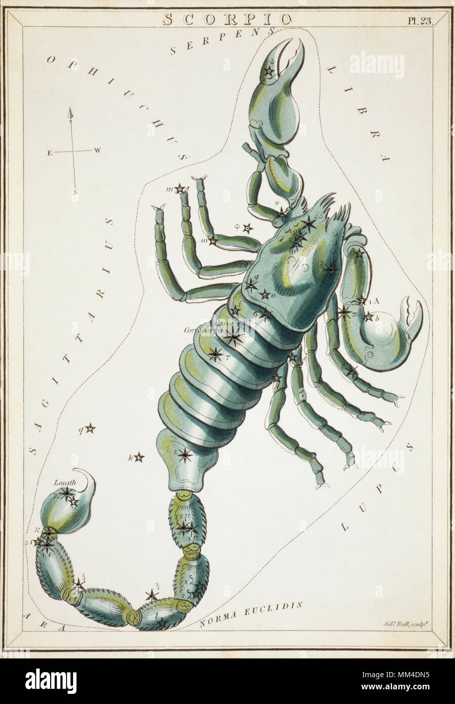 Scorpio.  Card Number 23 from Urania's Mirror, or A View of the Heavens, one of a set of 32 astronomical star chart cards engraved by Sidney Hall and publshed 1824. - Stock Image