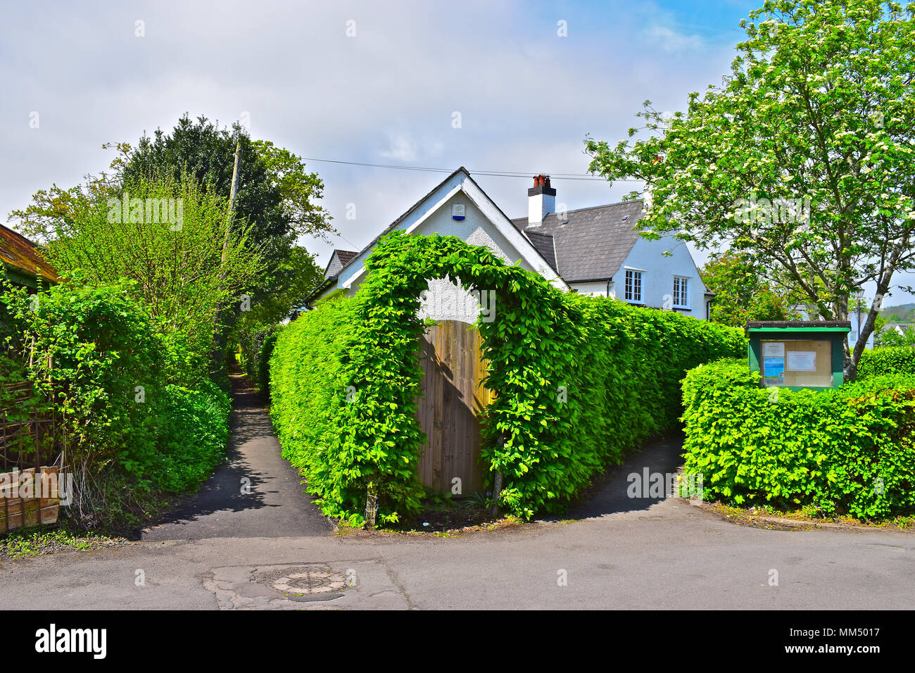 Green hedgerows line footpaths in Rhiwbina Garden Village, erected in the early1900s to enable workers to live 'in the country'-Cardiff,Wales - Stock Image