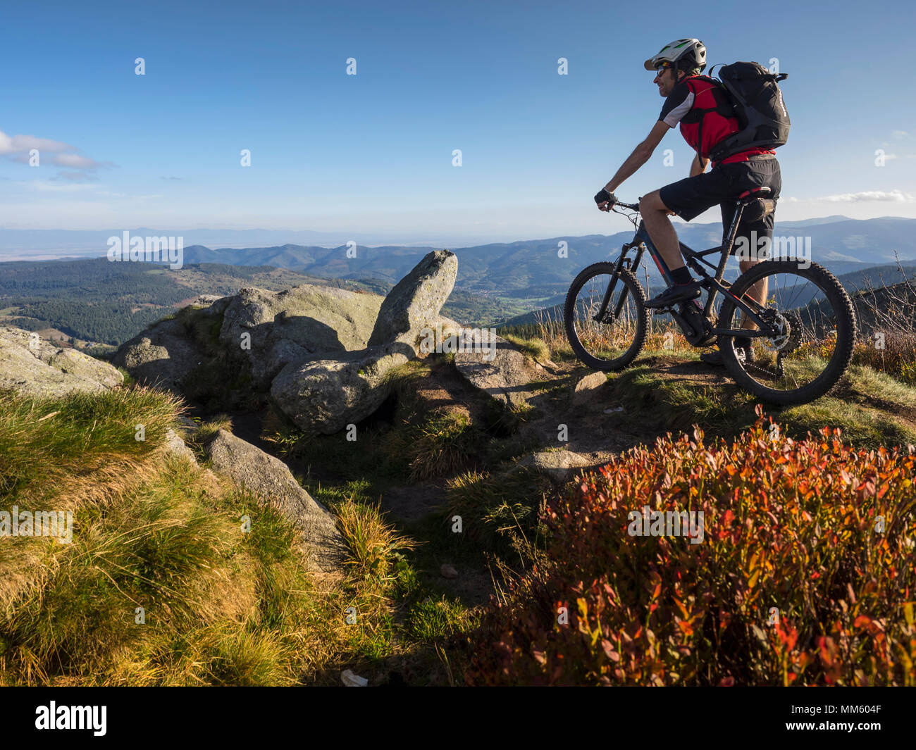 Mountain biker cycling on single trail on Ringelbuhlkopf, Alsace, France - Stock Image