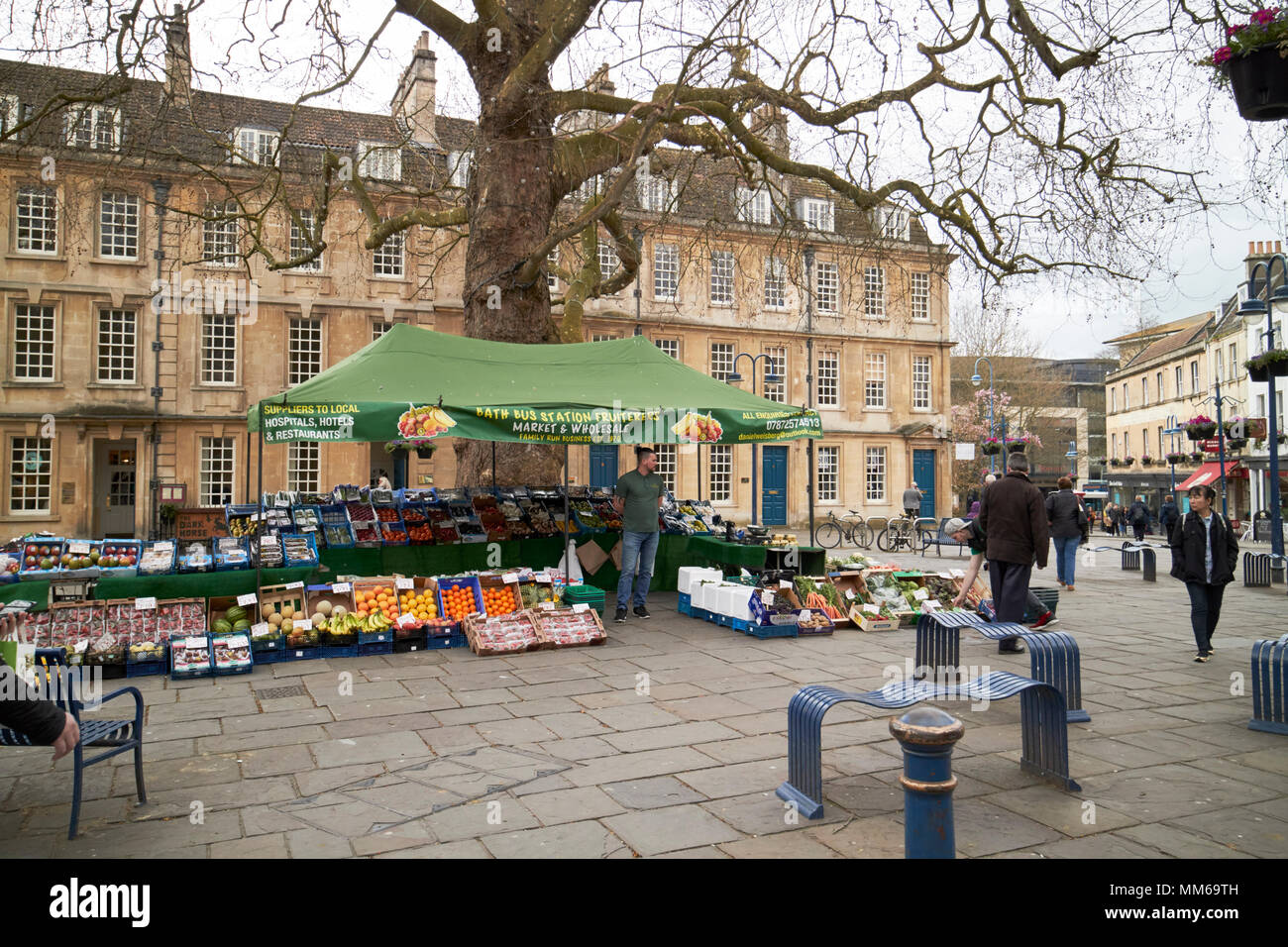fruit market stall in kingsmead square under the london plane tree Bath England UK - Stock Image