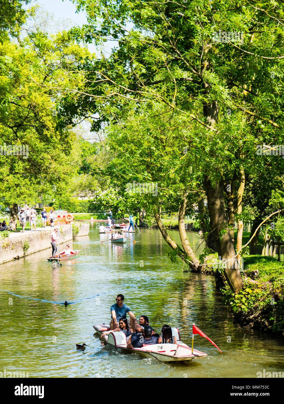Punting, River Cherwell, Christchurch Meadow Walk, Christ Church, Oxford, England, UK, GB. - Stock Image