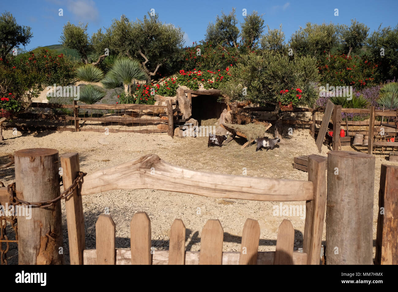 RHS Malvern Spring Festival - Thursday 10th May 2018 - Opening Day for this years RHS Malvern Spring Festival - The show gardens include Billy's Cave designed by Villaggio Verde to evoke a slow pace small holding in rural Portugal complete with pygmy goats. Photo Steven May / Alamy Live News - Stock Image