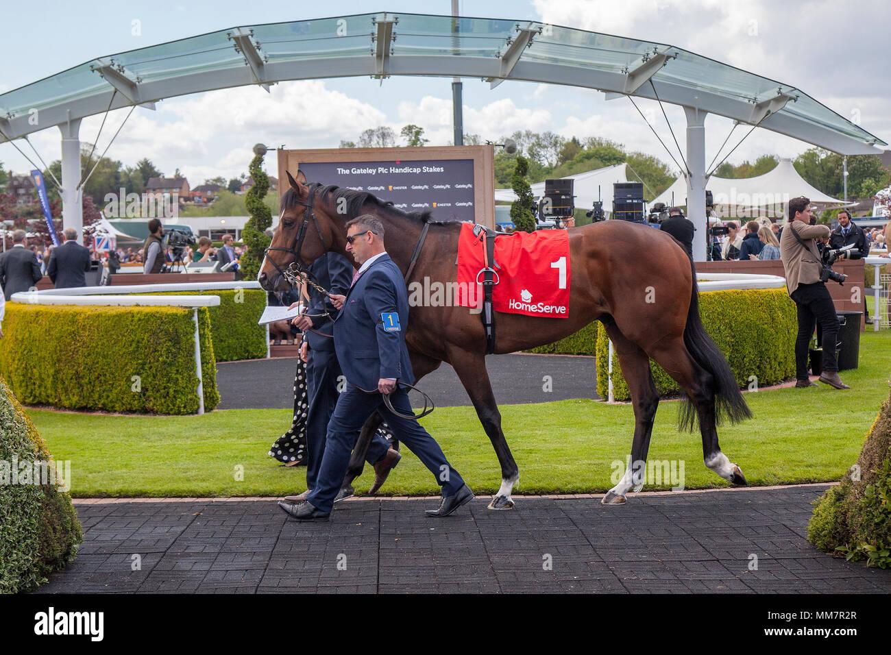 Racing Calendar May : Chester races horse stock photos