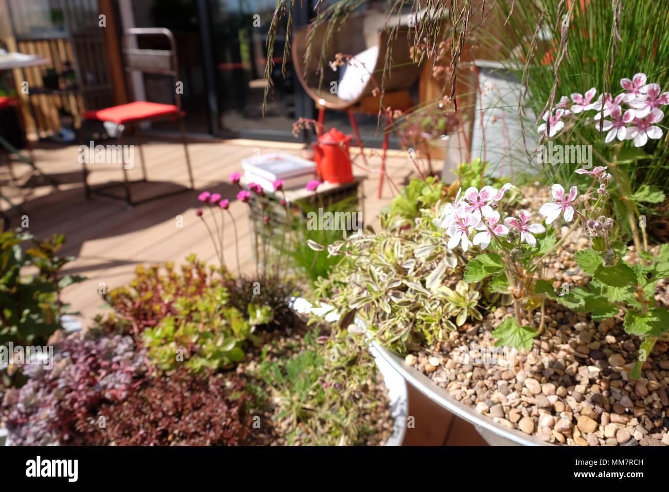 Small Garden Design Features Stock Photos Small Garden Design