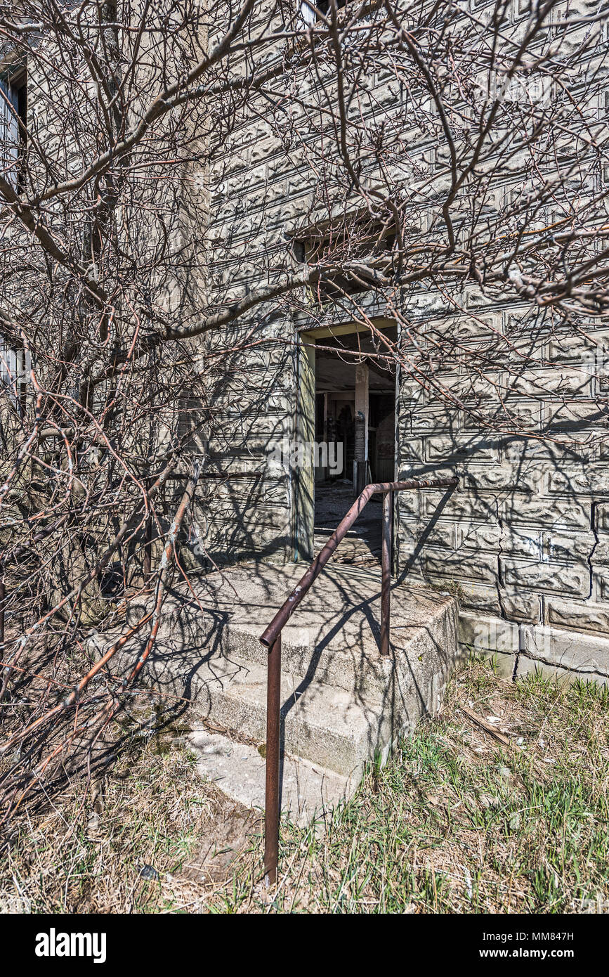 Back door to a 19th century school overgrown with tree branches - Stock Image