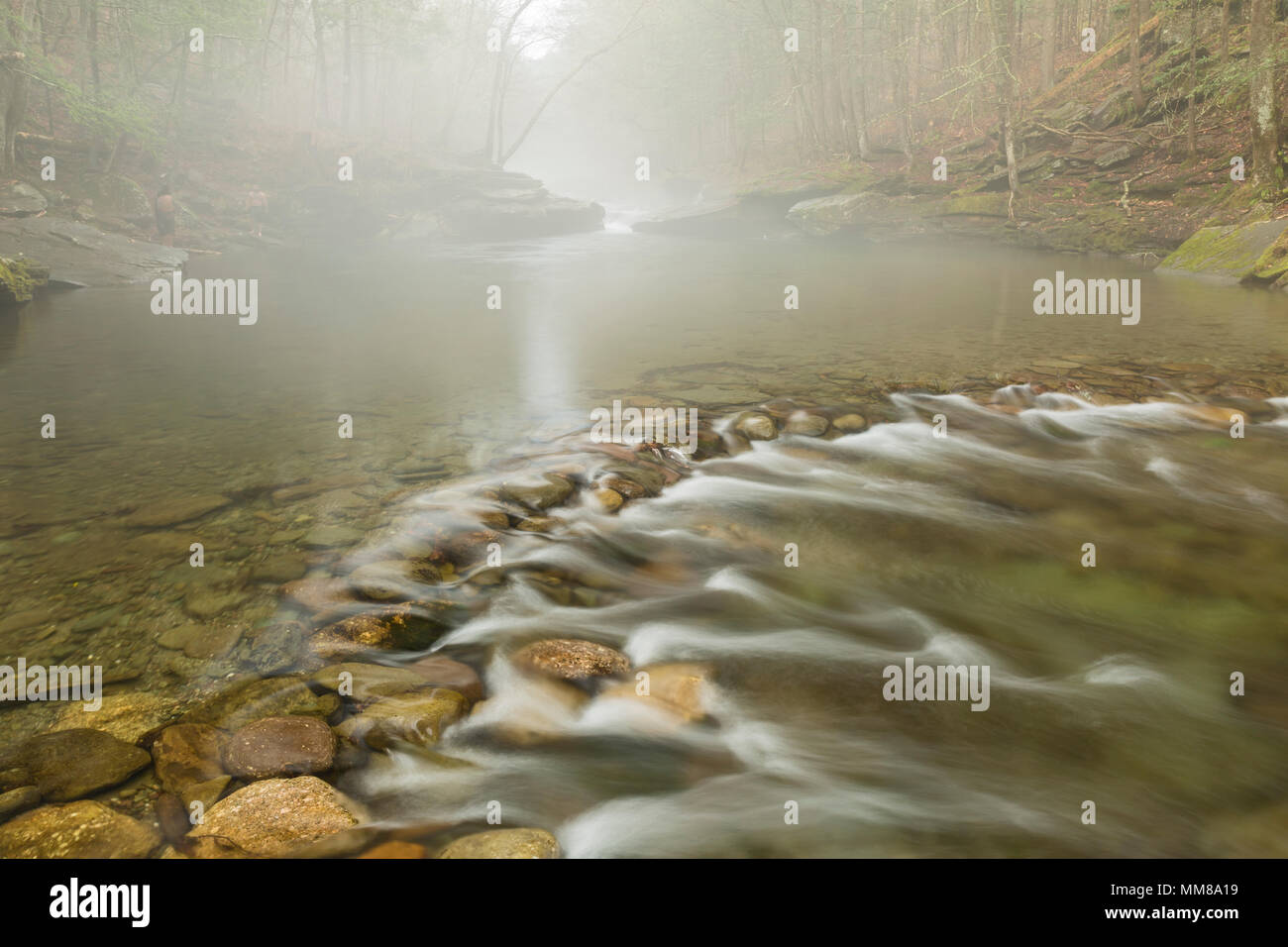Peekamoose Blue Hole wrapped in Spring fog on the Rondout Creek in Denning, New York. - Stock Image
