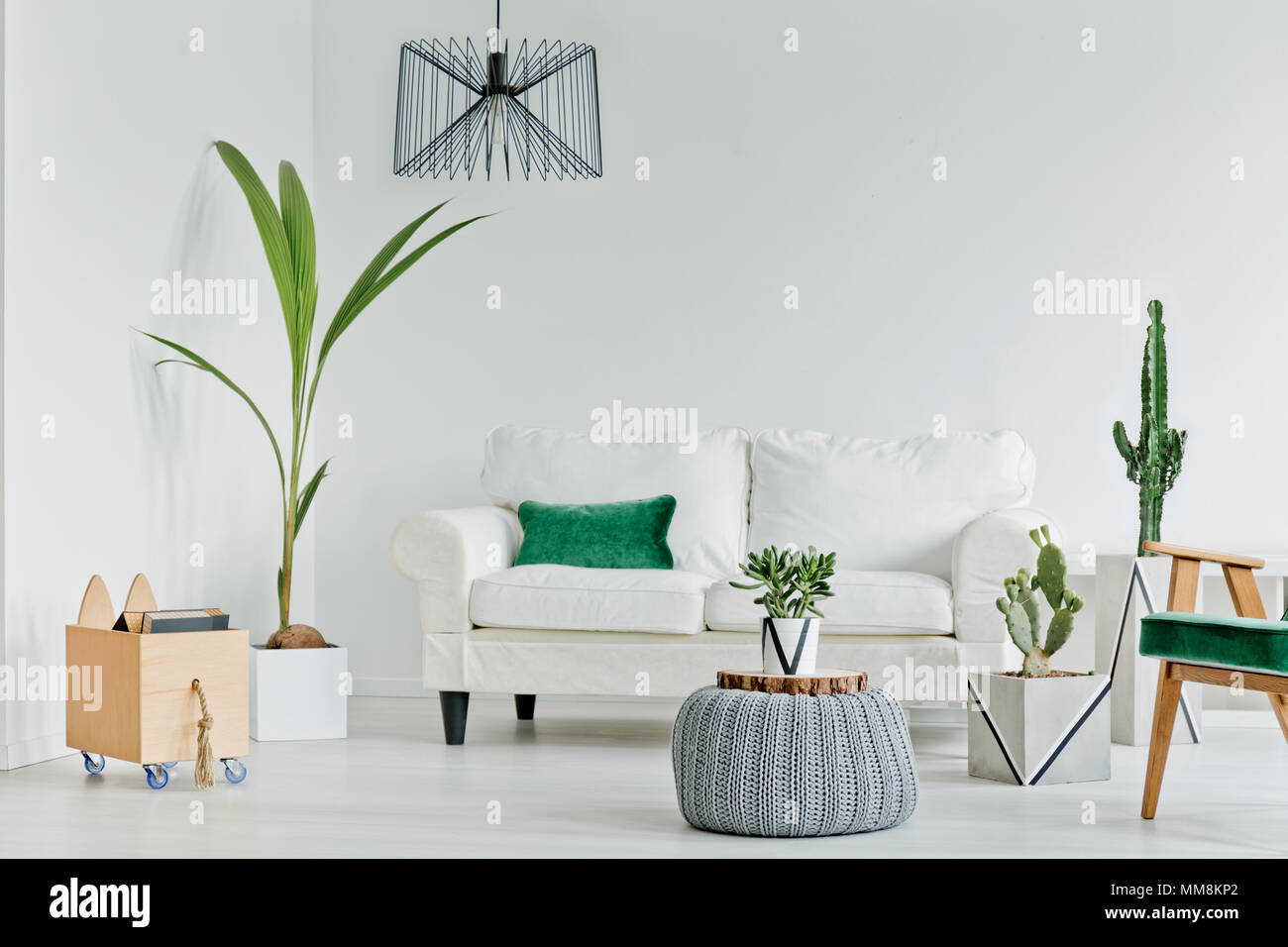 Groovy White Living Room With Decorative Houseplants Sofa And Creativecarmelina Interior Chair Design Creativecarmelinacom