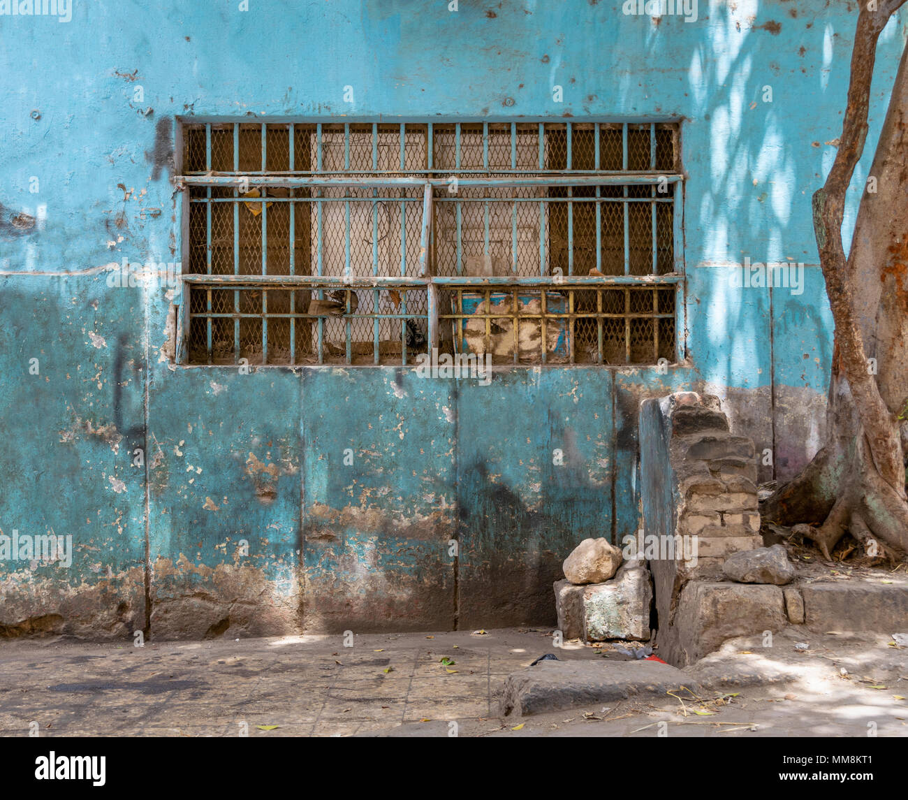 Abandoned grunge turquoise painted wall with closed window covered with rusty protective iron bars and tree trunk - Stock Image