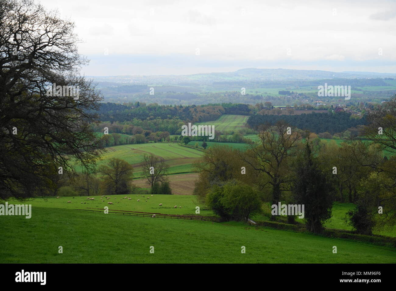 View of Staffordshire Moorlands from a hill near Enville - Stock Image