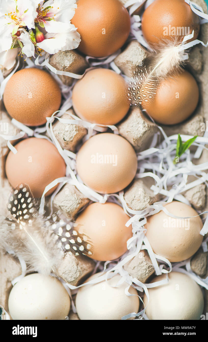 Natural colored eggs for Easter in box, close-up - Stock Image