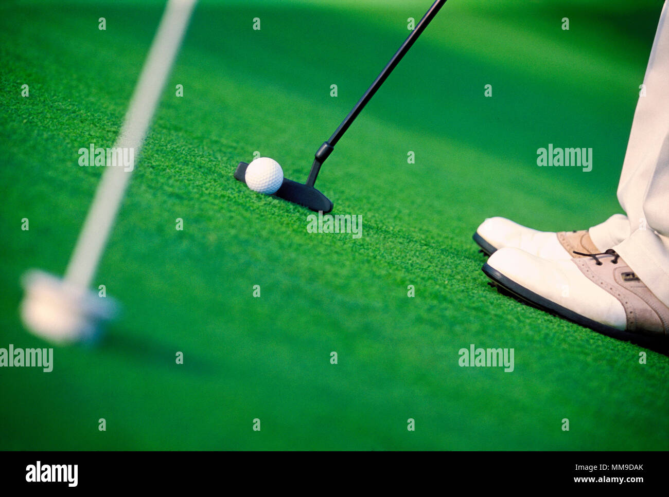 Lining up a putt on a practice green. - Stock Image