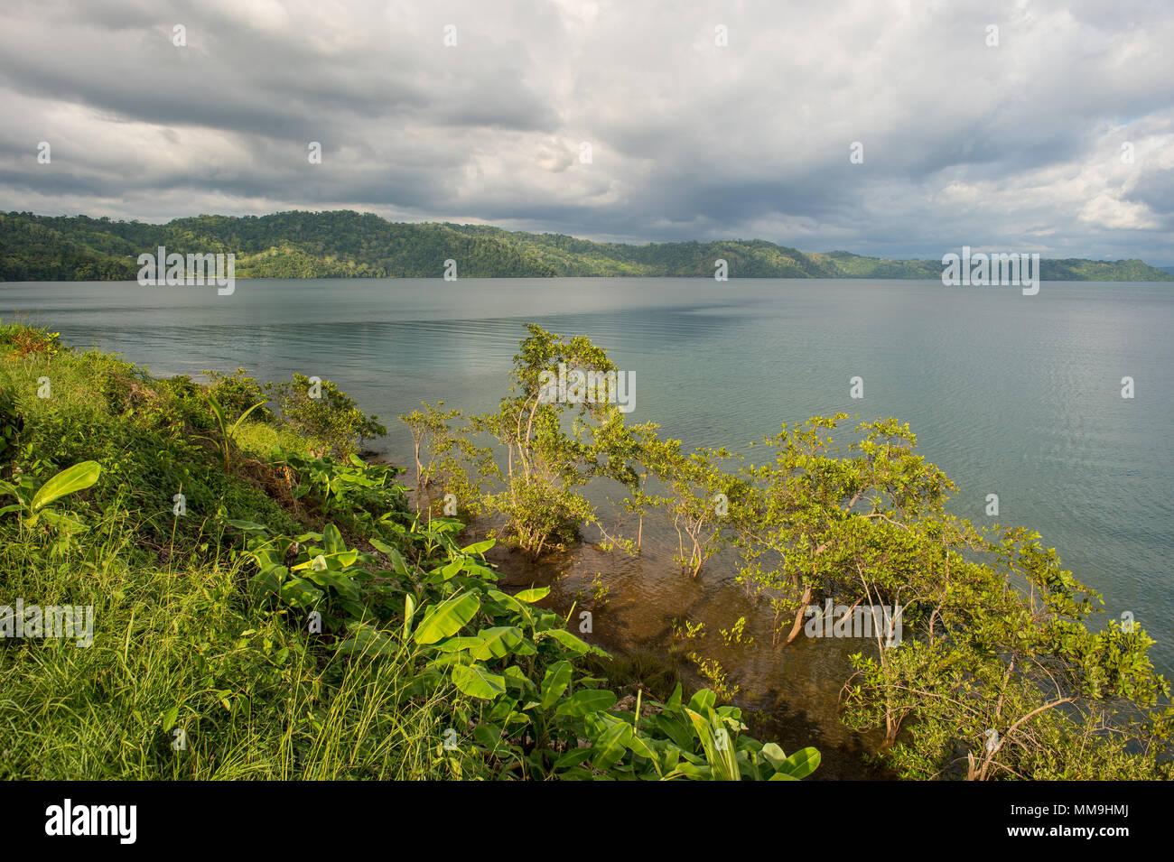 Golfo Dulce, Costa Rica, Osa Peninsula, Centroamerica - Stock Image