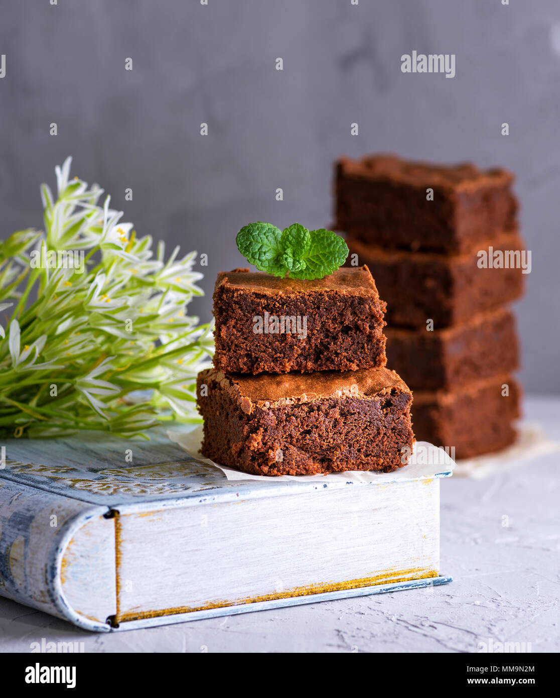 a pile of square pieces of chocolate brownie with a sprig of mint, close up Stock Photo