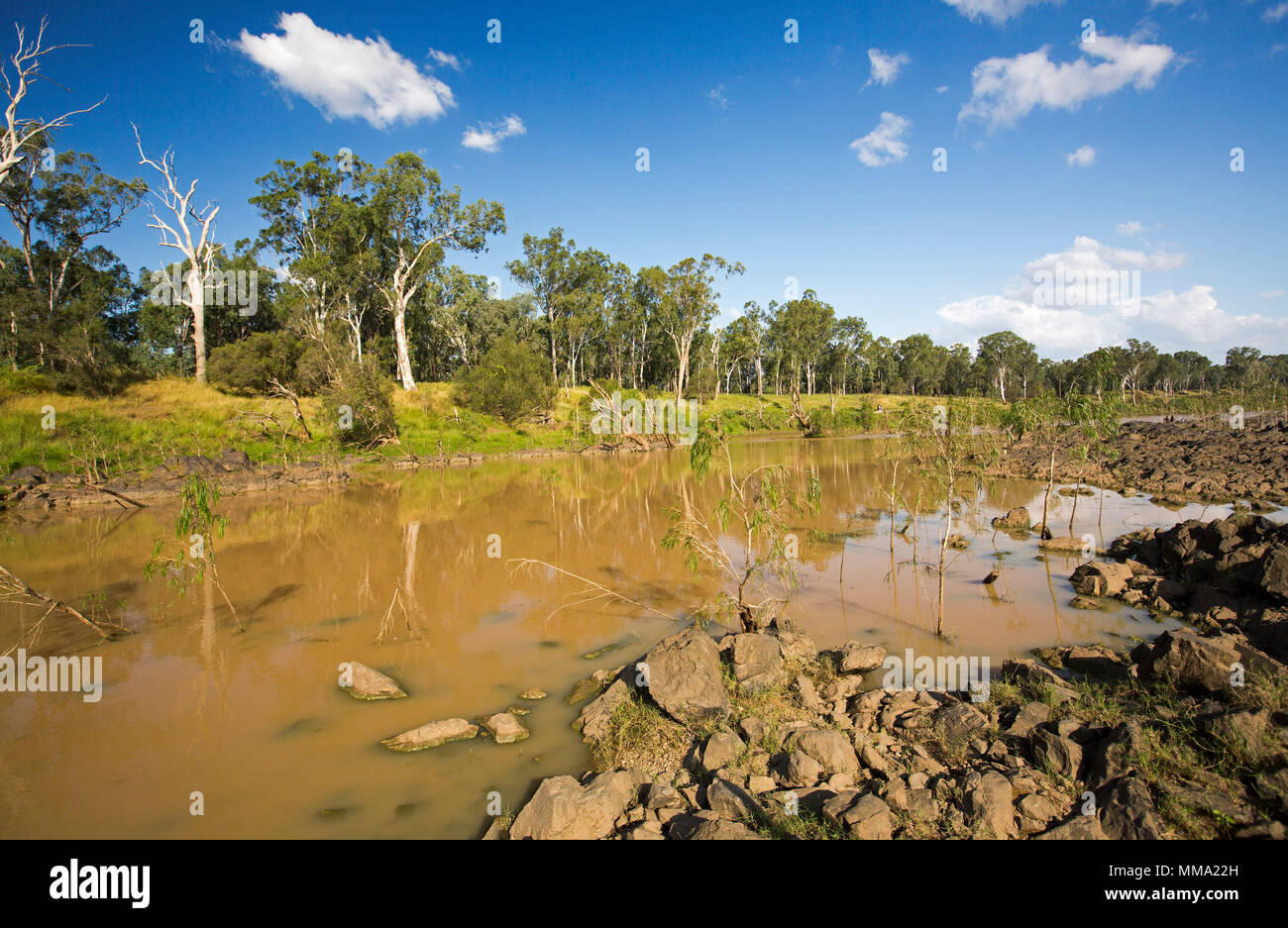 Colourful landscape with calm waters of Fitzroy River hemmed with tall trees and emerald grass under blue sky in central Queensland Australia - Stock Image