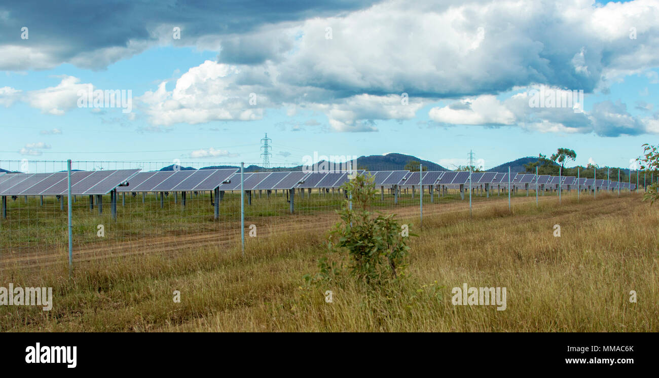 Panoramic view of huge array of solar panels on farm under blue sky in central Queensland Australia - Stock Image