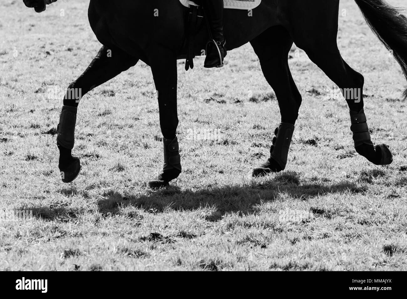 Badminton, Stroud, Gloucestershire, England, UK. 3rd May 2018. Lydia Hannon (GBR) on My Royal Touch during dressage at the Mitsubishi Motors Badminton - Stock Image