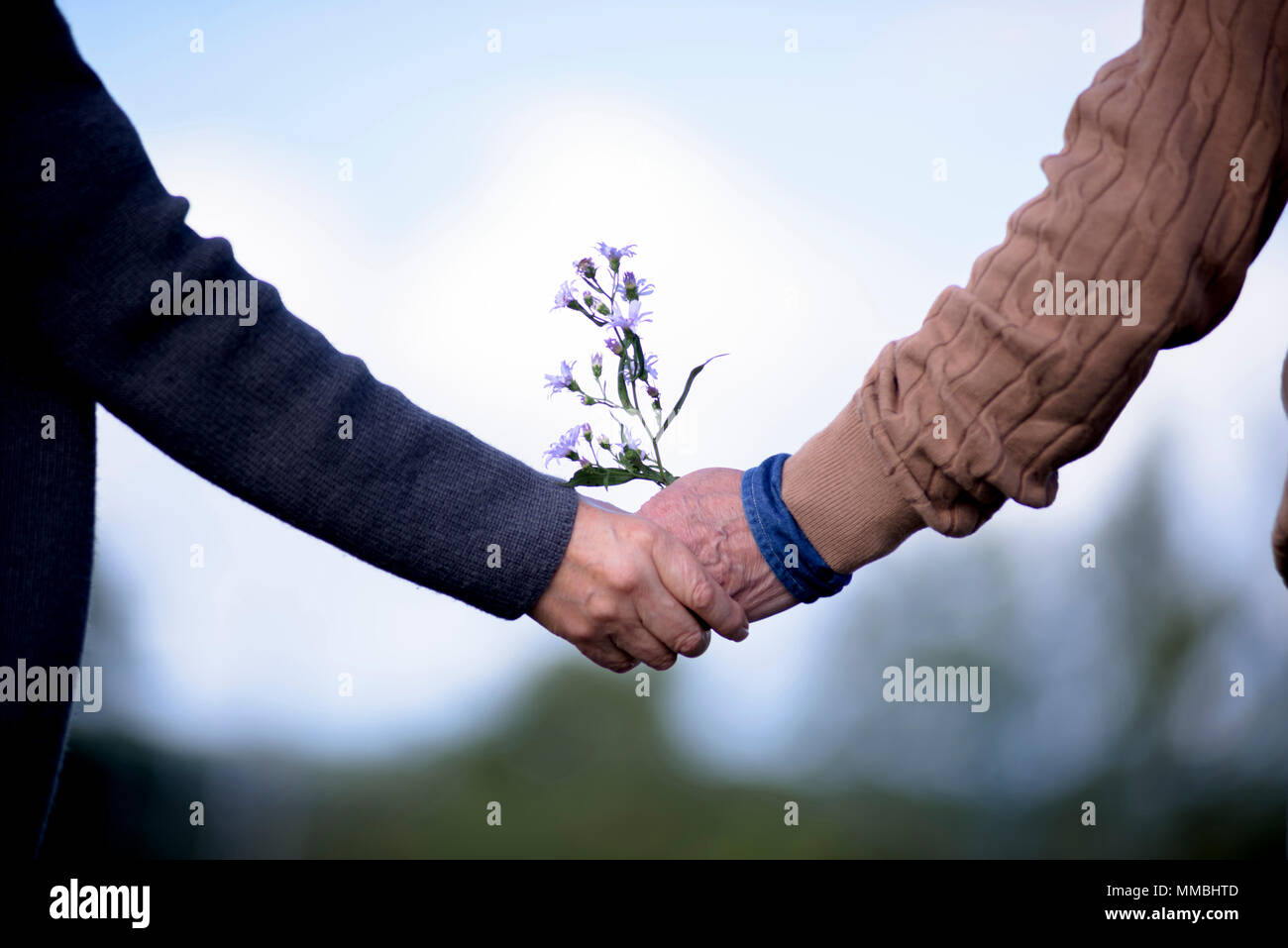 Close up of elderly man and woman standing outdoors, holding hands. - Stock Image