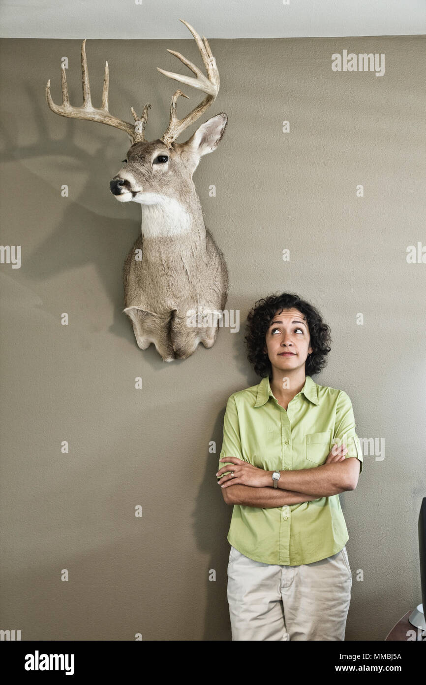 Woman in an office with a mounted deer head. - Stock Image