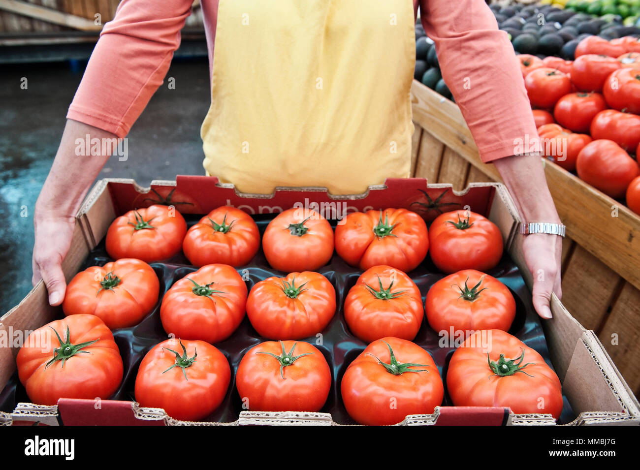 High angle close up of person holding large tray of fresh tomatoes at a fruit and vegetable market. - Stock Image
