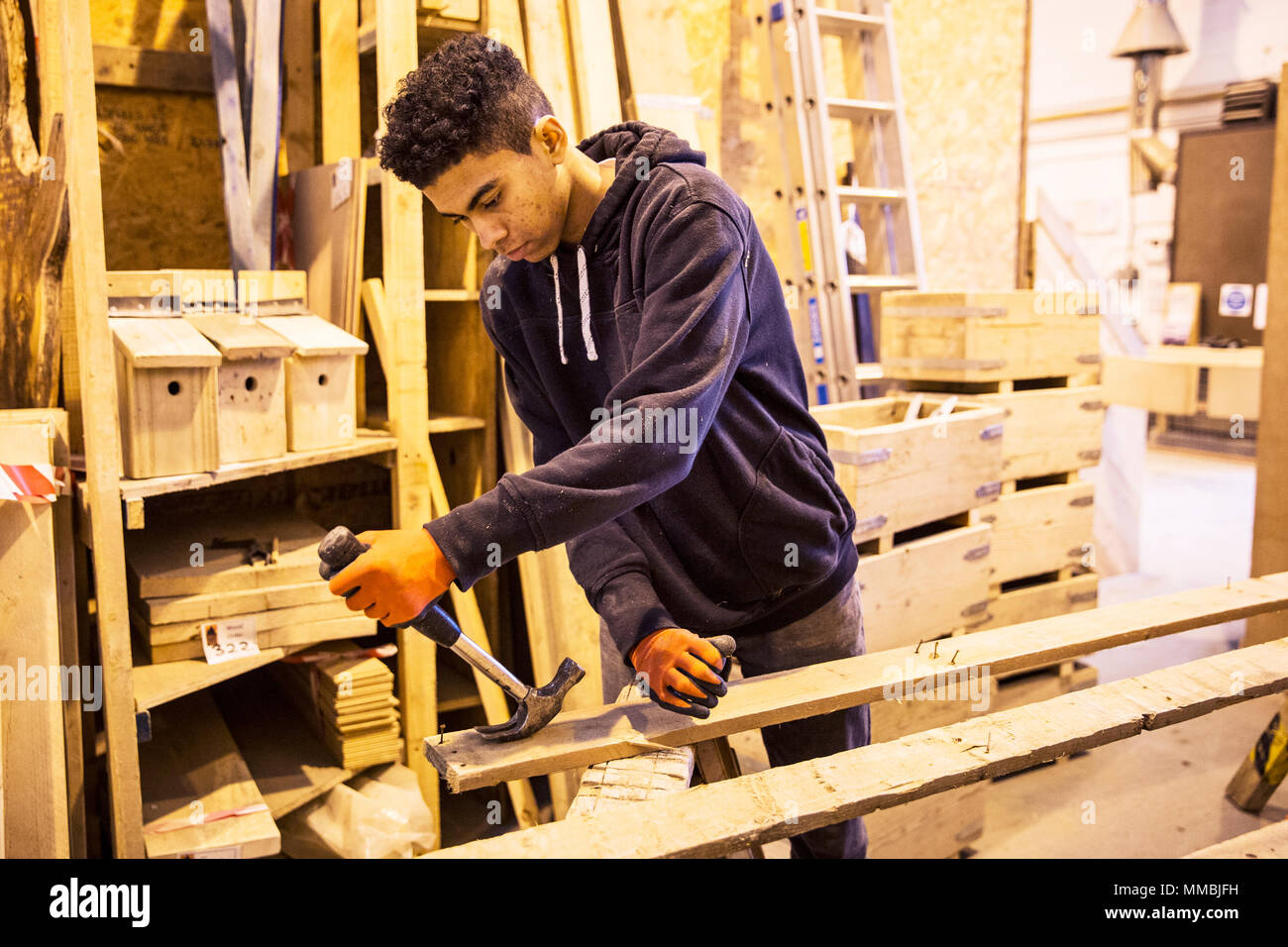 Young man wearing work gloves standing in warehouse, removing rusty nails from recycled wooden planks using hammer. - Stock Image